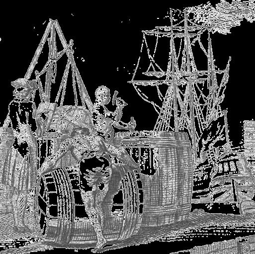 barril-canamo