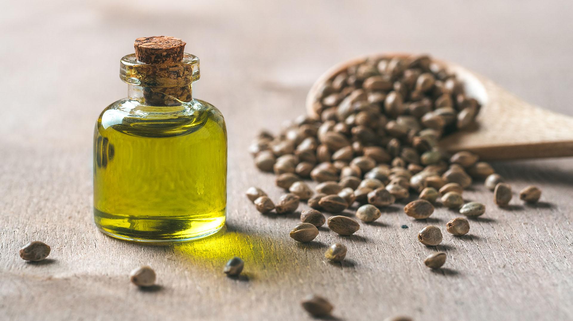 Semillas y aceite de cañamo