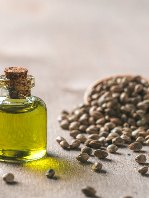 hemp-seeds-and-hemp-oil-copy-space-L3VSCK7